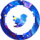 galaxy_twitter_bird_social_icon_40x40